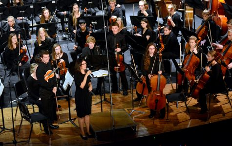 Three OHS Orchestra members preform in Texas with All- National Orchestra