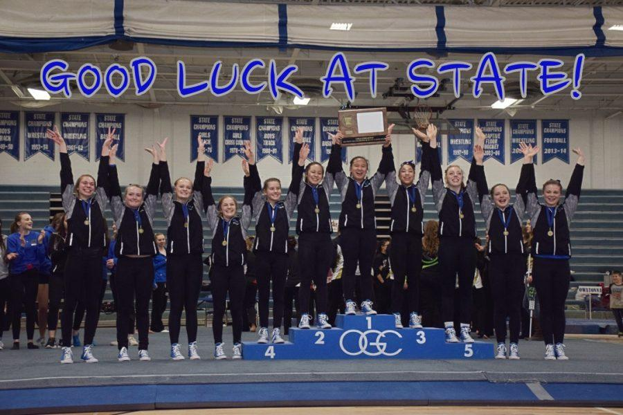 OHS Gymnastics headed to State