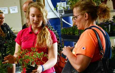 Greenhouse/FFA members sells plants at the plant sale
