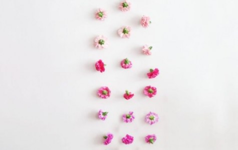 Ombre Flowers Wall Hanging