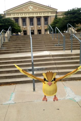 A pidgey just hanging out on the stairs