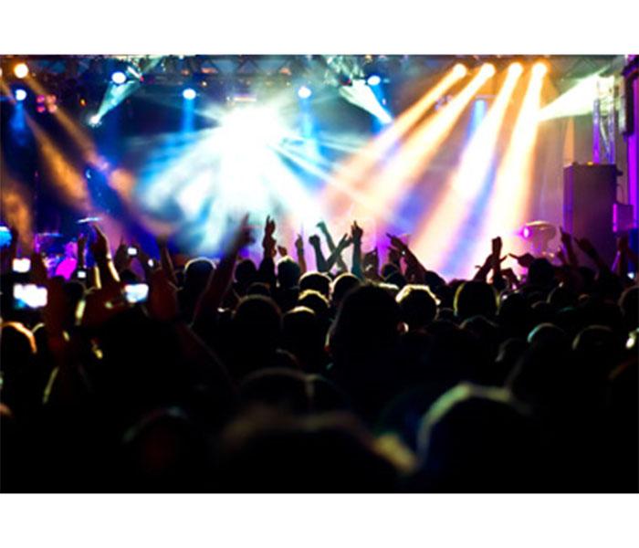 Teens enjoying a live concert.