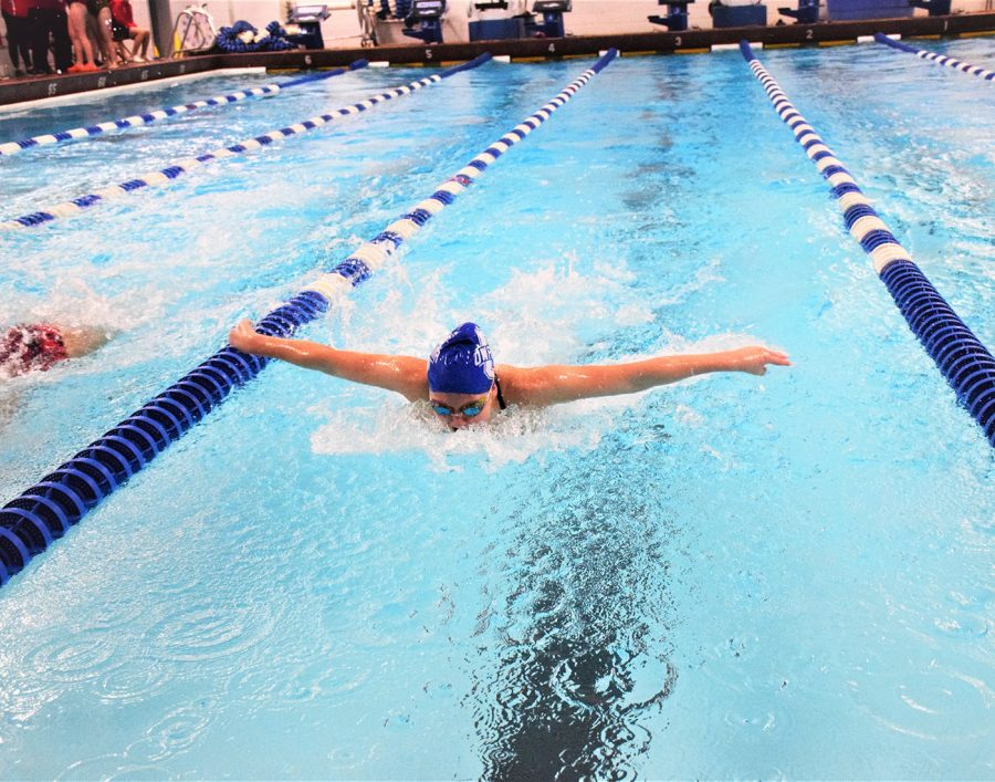 Senior Erica Svenby swimming butterfly