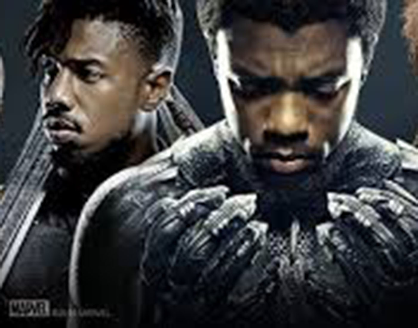 Black Panther: Fight for the throne