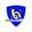 Magnet shield logo