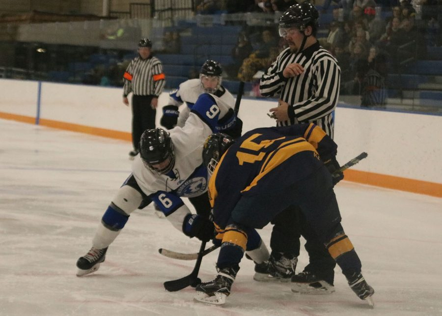 Collin Pederson Fights for the puck