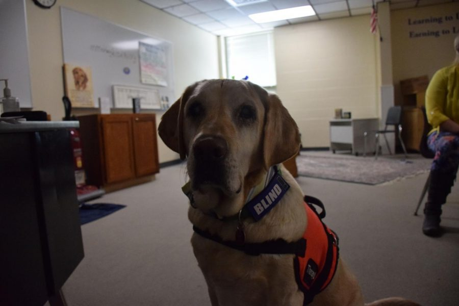 Trooper in his room in the AG building where he helps students talk through situations