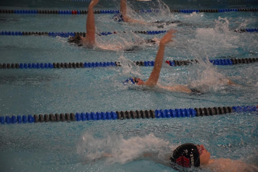 The OHS Boys swim team take a tough losses but there hoping on winning the St. Paul meet