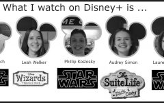 Deciding on Disney+