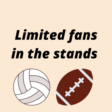 Limited Fans in the Stands