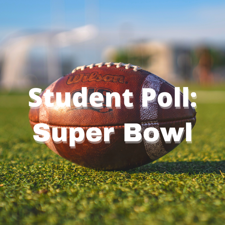 Student Poll: Super Bowl