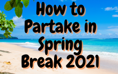 How to partake in spring break 2021