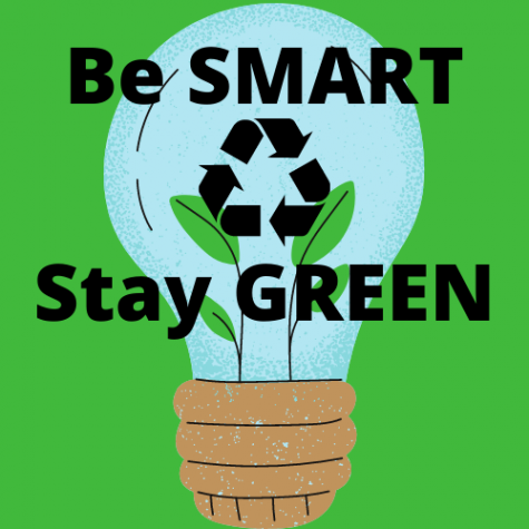 As Earth Day has come and gone, many choose to stay green and still care for the planet in their own way.