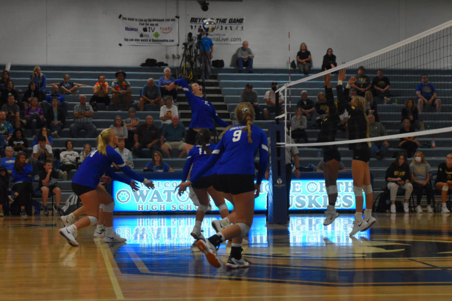 Mehsa Krause spiking the ball for an owatonna point
